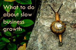 What to do about slow business growth